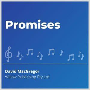 Blue-cover-music-Promises