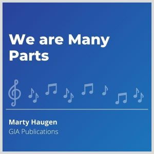 Blue-cover-music-We-are-Many-Parts