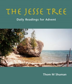 Sea-stone-leaves-cover-text-The-Jesse-Treeext-